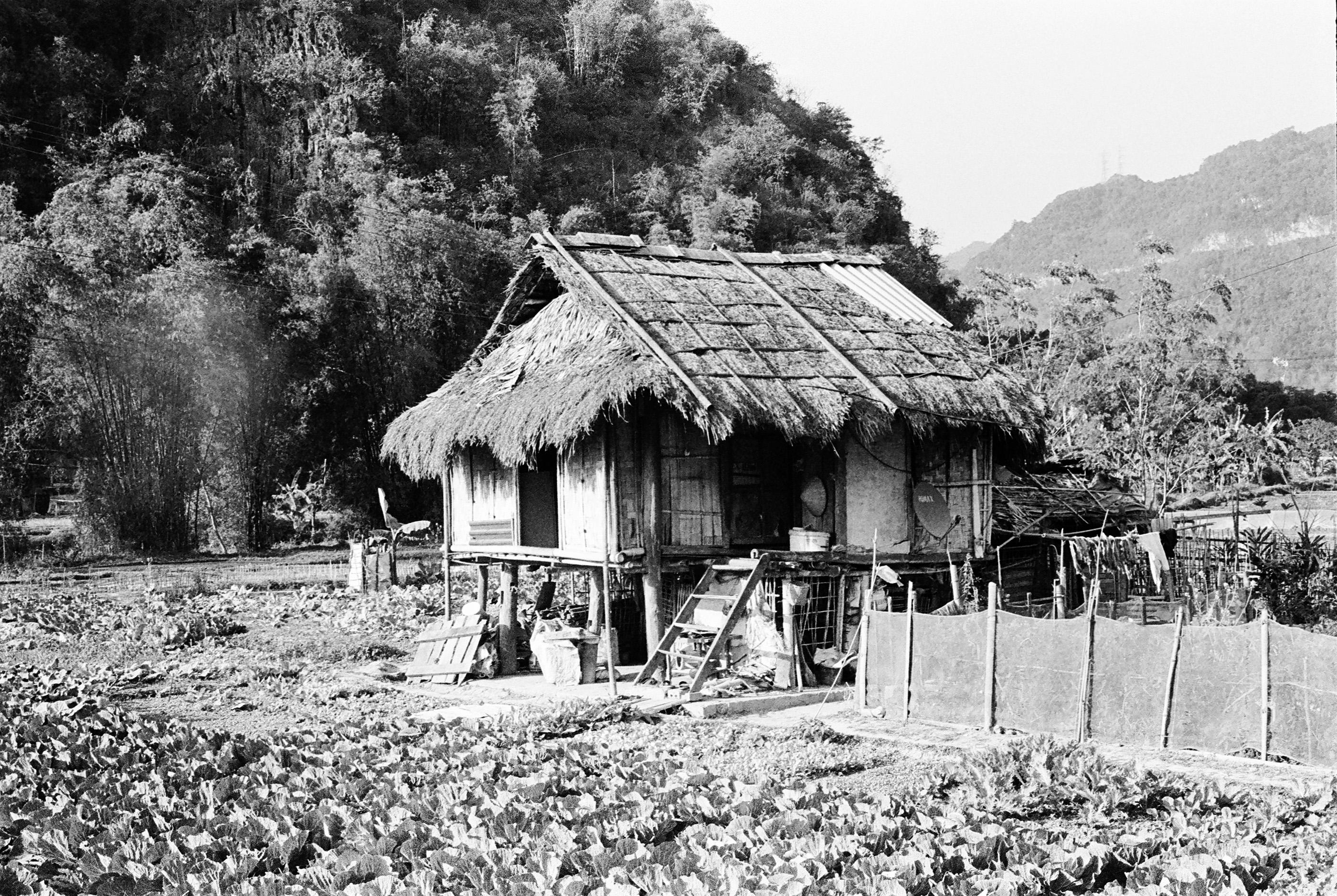 5 TANT VIETNAM M